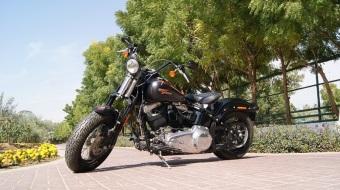2009 Harley Davidson Softail